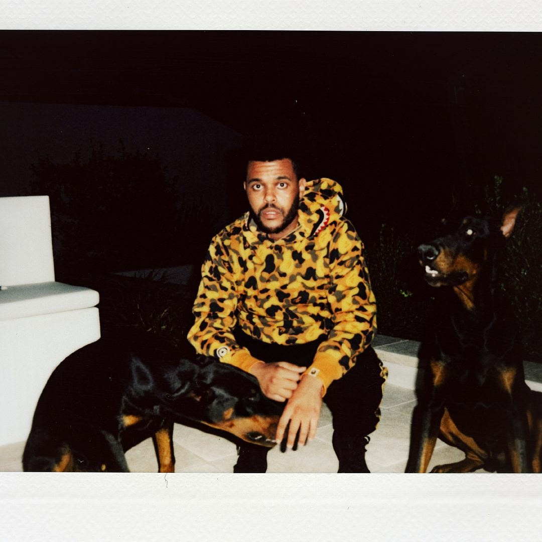 Photo: The Weeknd